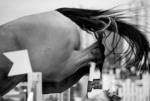 Jumping / by Heather Schubert