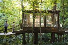 Tree Houses / by Jackie Hemi