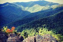 Black Mountain,NC / by Nina Watson