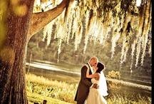 Wedding / by Melissa McQuat