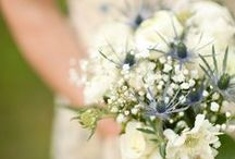 Wedding stuff / by Stephanie