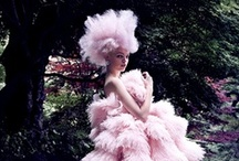 Haute & Couture / by Silk & Whiskey