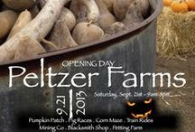 Fun For The Kids / by Peltzer Farms