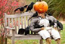 Halloween Decorating/Party Ideas / Fun decorating & party ideas for Halloween! / by 94.9 Cincinnati