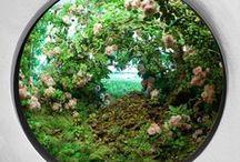 Eco_Landia / by Yvonne Senouf