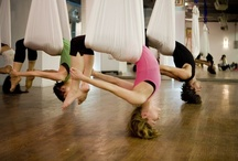 aerial yoga / by Meredith Goodrich