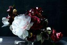 florist / by penzo