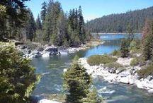 my california / by sondra :))