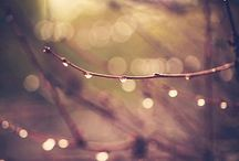Bokeh / Bokeh Photography. / by Meera Darji