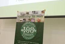Centennial Celebration - Yuma / The centennial celebration in Yuma, February 2014 / by University of Arizona Cooperative Extension