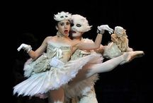 Ballet!!!  (And other dance!) / by Hedwig Elizabeth