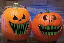 Halloween / by Dianne Beasley