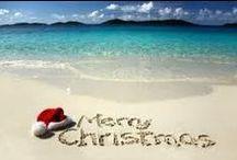 Beachy Christmas / by Karen Skandier