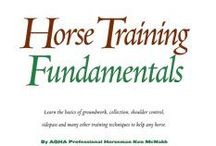 Horse Training And Education  / by Pamela