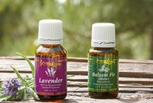 Young Living Essential Oils / by Pamela
