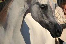 Horses Rock / Heaven is a little closer in the barn / by Jesse Dirmeyer