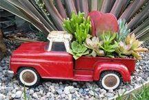 Botanical. / by Lauren Mmmmmmm