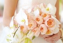 Weddings / by Woodlands Hotel