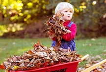 Fall Landscaping / Tis the season for Fall cleanup. It's not fun, but here are some tools to make it easier! Shop more tools: http://www.farmandfleet.com/sale/413/ / by Blain's Farm & Fleet