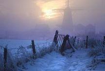Fog - Misty Beauty / by Lisa Trader