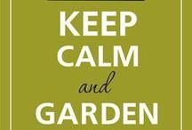 Plant & Garden Stuffs / by Charlotte Saine