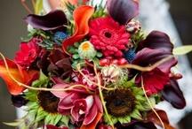 Floral arrangements / by Edith Tergau