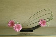Floral arrangements Ikebana / by Edith Tergau