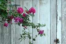 ~ come on in ~ / doors and gates for our cottage / by Neesey Hobbs
