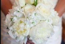 Wedding♥♡ / by Anita Sophia