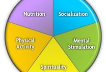 Healthy Lifestyle / by Rims Res