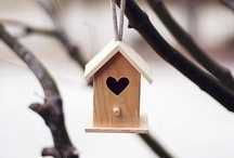 """Bird Houses / Disclaimer: These are just """"PINS"""". I don't claim copyright or ownership of any content on this board. / by Magnetic Jewelry by J & I"""