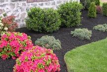 garden & yard ideas / by loretta o'trimble