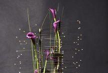 Floral arrangements / by Iza Buraczyńska