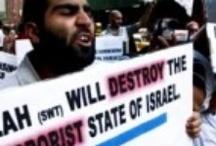 Muslim Terrorism / by Now The End Begins
