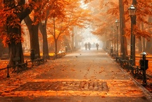 Simply Autumn / Time for hot chocolate! / by Cristal Bernal