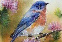 Bird Art / by Anita Miracle