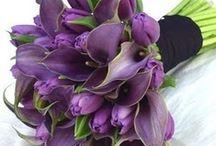 Purpleness...I Do's / by Sherry Hagen