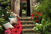 OUTDOOR OASIS / by JANE MARCOTTE