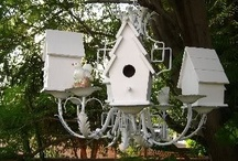 BIRD BUNGALOWS / by JANE MARCOTTE