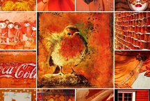 ORANGE-MY FAVORITE COLOR / I'M PASSIONATE ABOUT THE COLOR ORANGE.  I HAVE IT IN EVERY ROOM OF MY HOUSE.  I LOVE IT BECAUSE IT'S HAPPY, IT'S WARM, IT'S COZY. / by JANE MARCOTTE