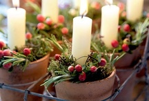 Holiday Decor and Ideas / by Cathy Rogers