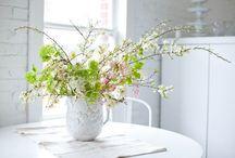 Végétal / Floral  / by Valérie