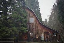 DESIGN || retreat / barns + boarding rooms  / by Sarah Copeland