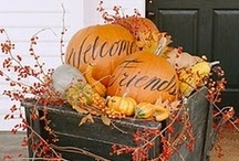 Halloween and Thanksgiving / by Michelle Kelly