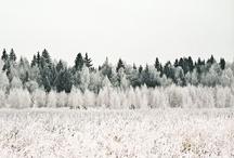 winter | colour / by Emma Lamb