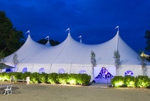 Century Tents / These premium tents feature majestic peaks and plunging lines that create a striking effect suiting the grandest of events. / by Newport Tent Company