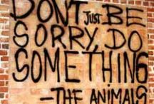 Animal Advocacy / For the animals. / by Monica Puente