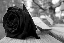 Saudades... / #Saudades #luto  http://pt.wikipedia.org/wiki/Anexo:Mortes_em_2014 / by Nando Guima