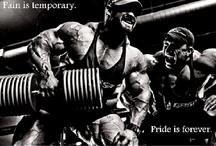 Bodybuilding Motivation / by Vegetarian Body