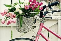 Springtime Love / All Things Spring / by Lisa Padgett